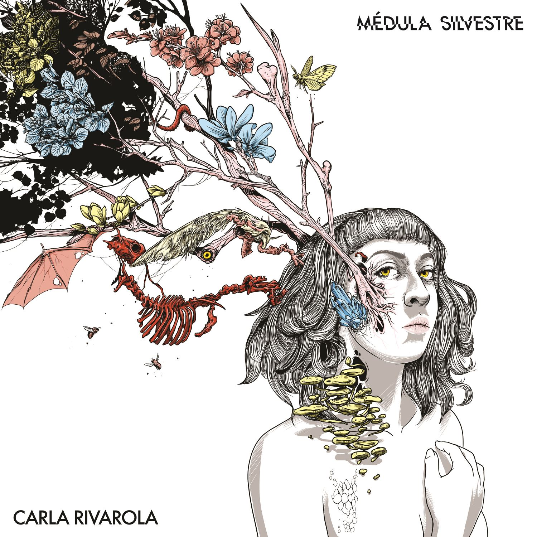 Carla Rivarola – Médula Silvestre